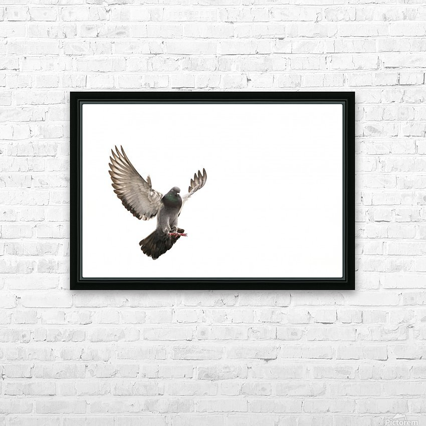 Take Flight HD Sublimation Metal print with Decorating Float Frame (BOX)