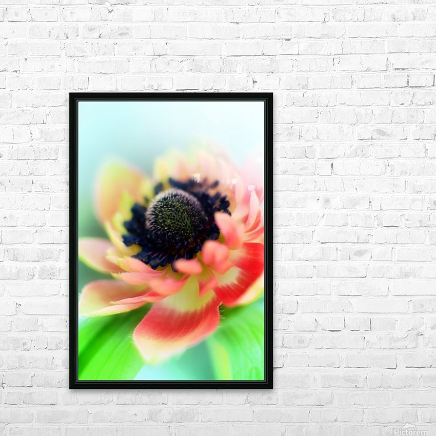 Anemone de Caen HD Sublimation Metal print with Decorating Float Frame (BOX)