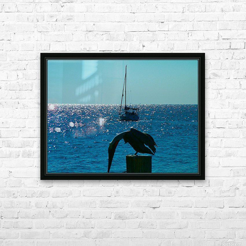 2004_1213St Pete Winter20040058 HD Sublimation Metal print with Decorating Float Frame (BOX)