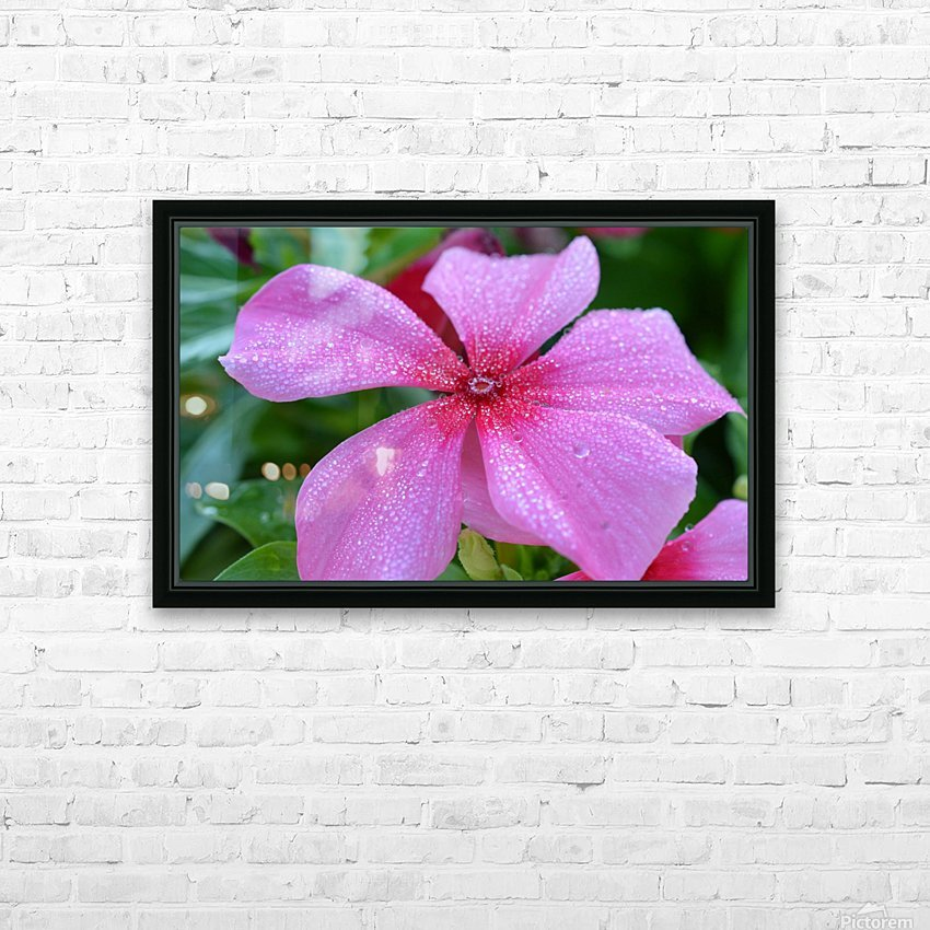 Floral Photograph  HD Sublimation Metal print with Decorating Float Frame (BOX)