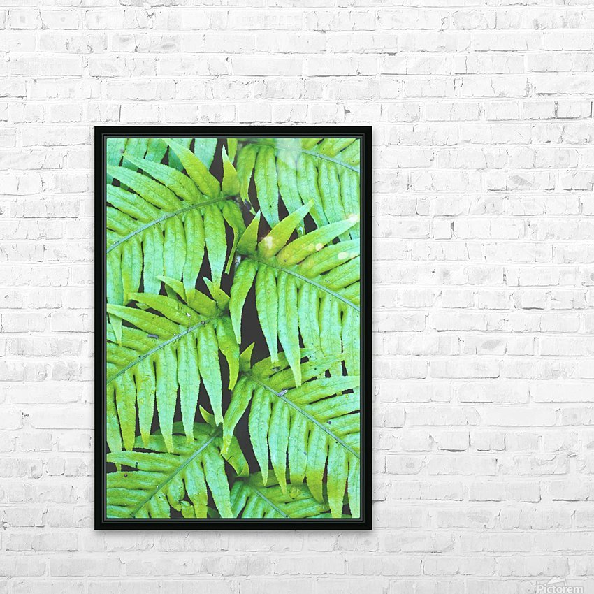 Fern Leaves HD Sublimation Metal print with Decorating Float Frame (BOX)