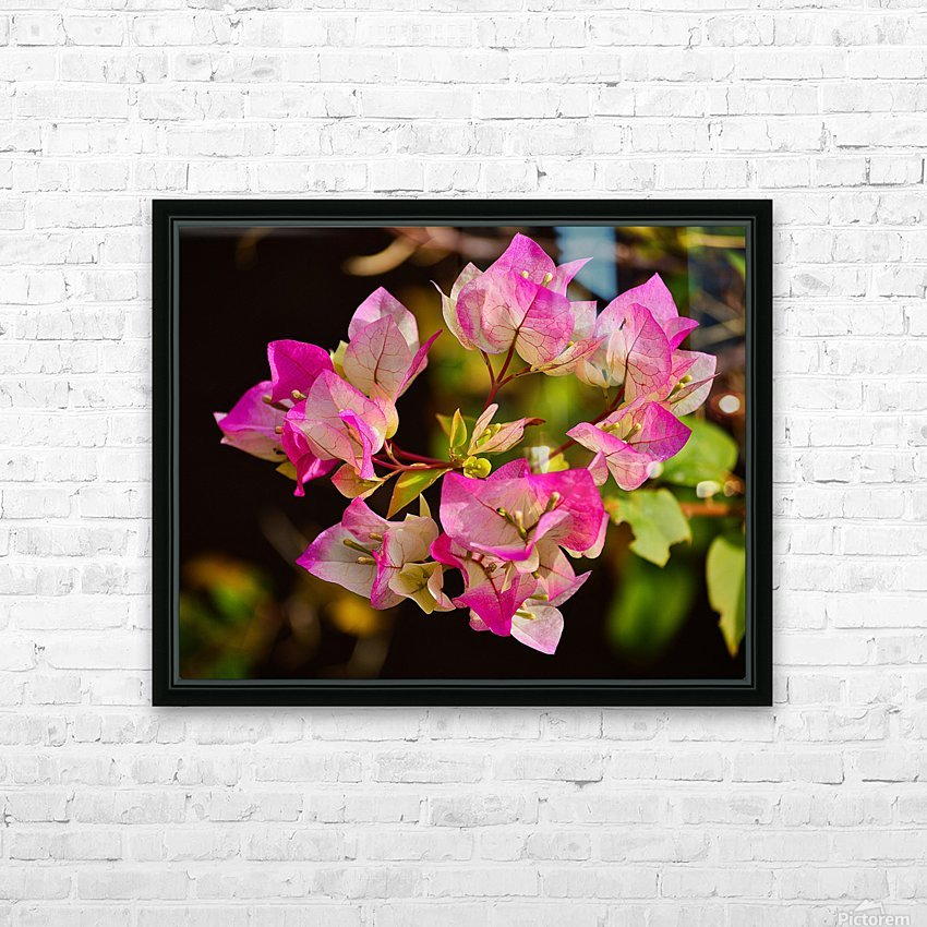 Bougainvillea HD Sublimation Metal print with Decorating Float Frame (BOX)