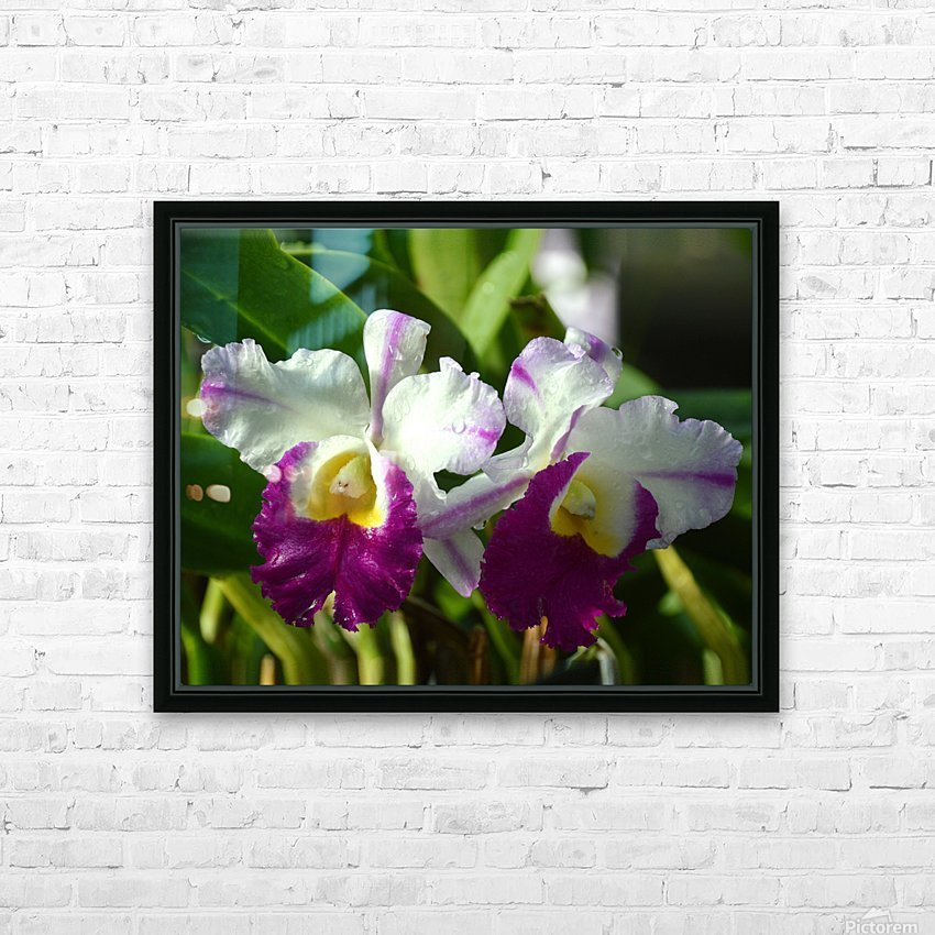Purple And White Orchids HD Sublimation Metal print with Decorating Float Frame (BOX)
