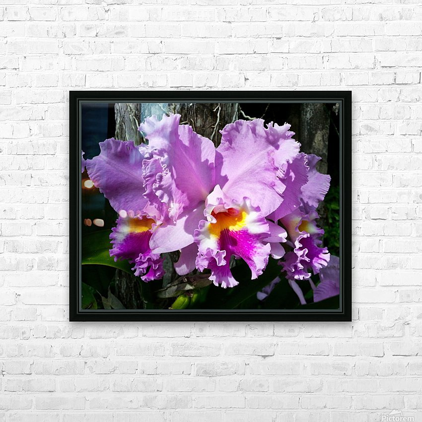 Frilly Orchid HD Sublimation Metal print with Decorating Float Frame (BOX)