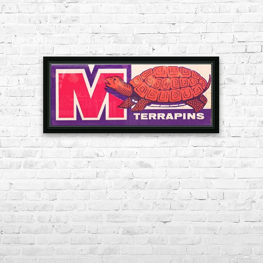 1957 Maryland Terrapin Art Reproduction HD Sublimation Metal print with Decorating Float Frame (BOX)