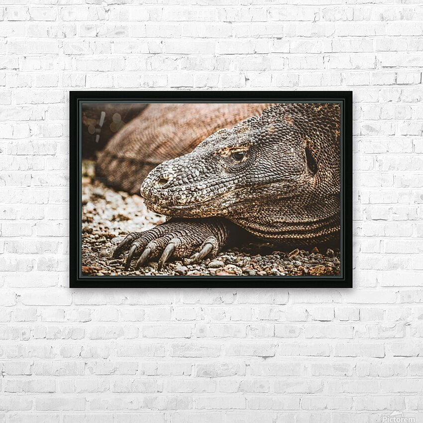 The Komodo Dragon  HD Sublimation Metal print with Decorating Float Frame (BOX)