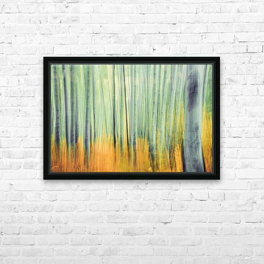 Aspen Trees in movement HD Sublimation Metal print with Decorating Float Frame (BOX)