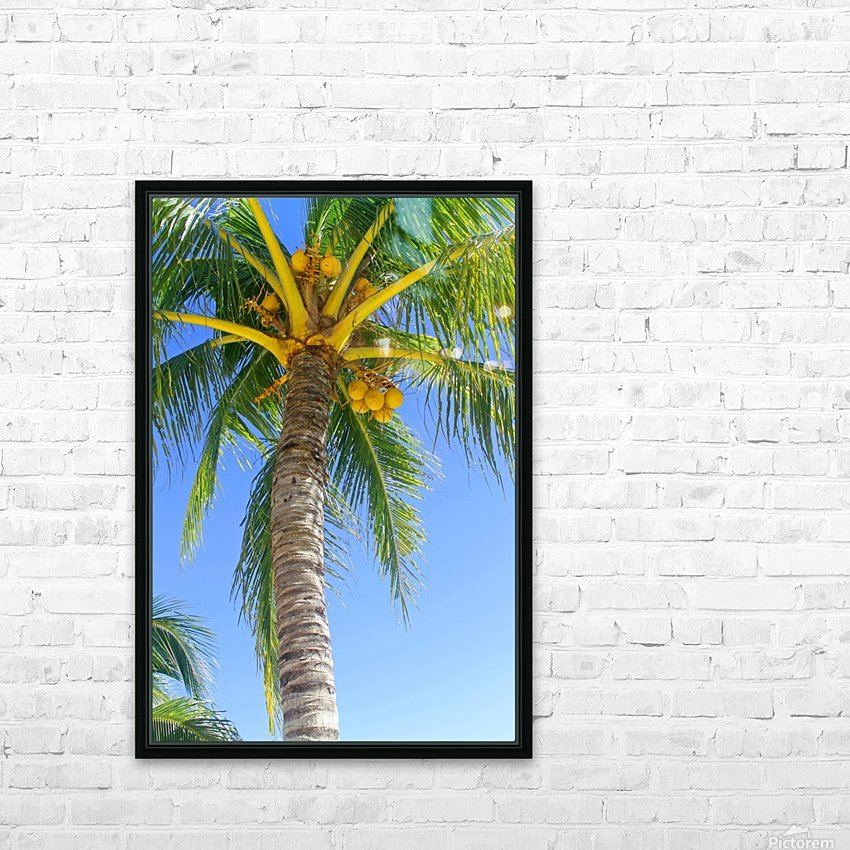 Palm Tree and Coconuts HD Sublimation Metal print with Decorating Float Frame (BOX)