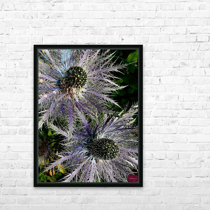 Sea Holly HD Sublimation Metal print with Decorating Float Frame (BOX)