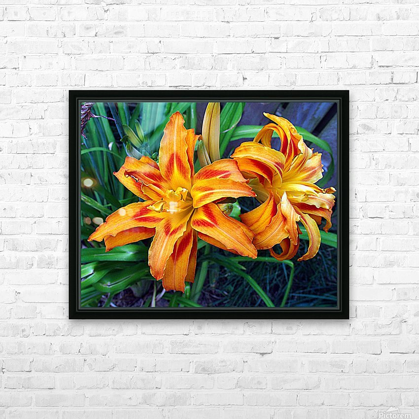 Day Lilies HD Sublimation Metal print with Decorating Float Frame (BOX)