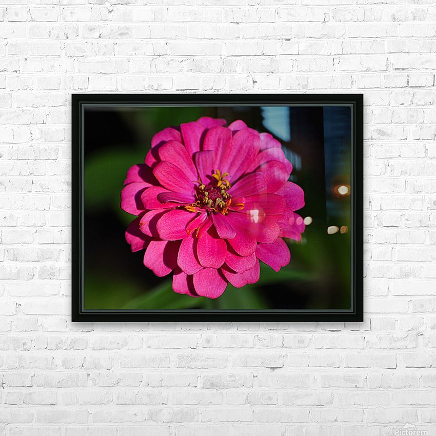 Zinnia HD Sublimation Metal print with Decorating Float Frame (BOX)