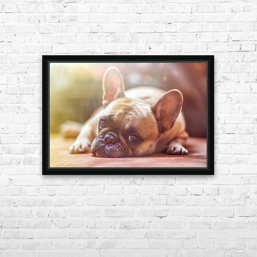 Sweet bully HD Sublimation Metal print with Decorating Float Frame (BOX)