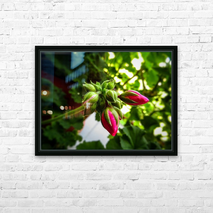 Red buds covered in green HD Sublimation Metal print with Decorating Float Frame (BOX)