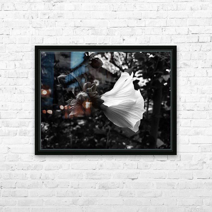 Blooming flower in black and white HD Sublimation Metal print with Decorating Float Frame (BOX)