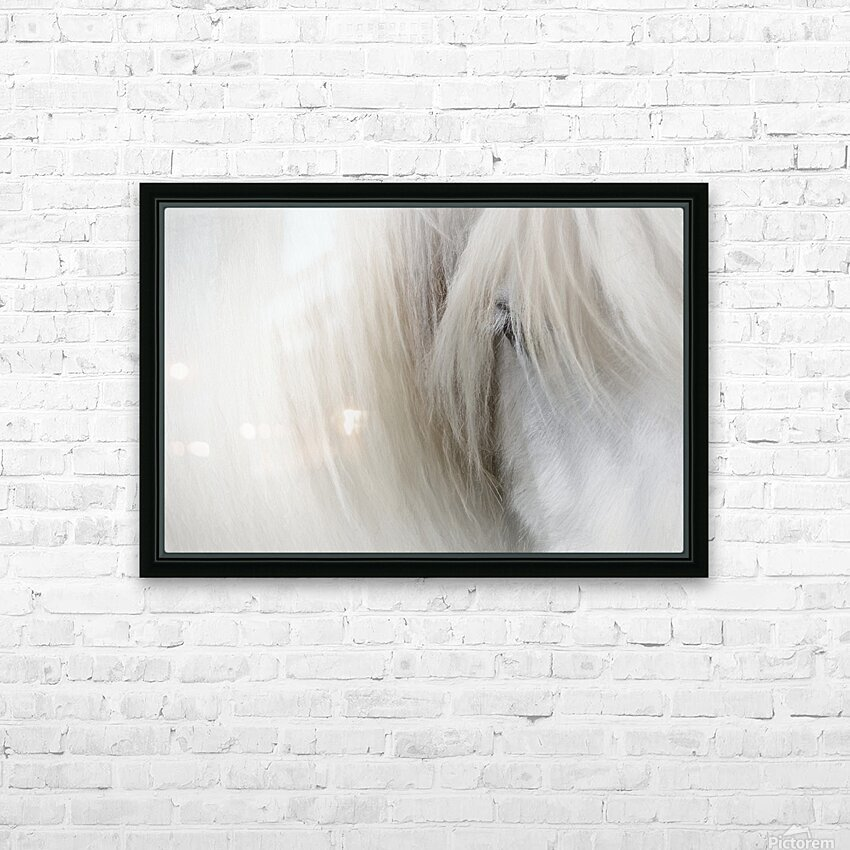 Icelandic Horse HD Sublimation Metal print with Decorating Float Frame (BOX)