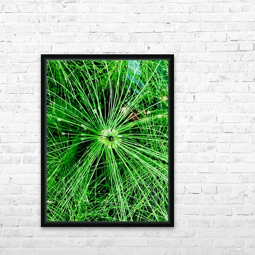 BOTANICA HD Sublimation Metal print with Decorating Float Frame (BOX)