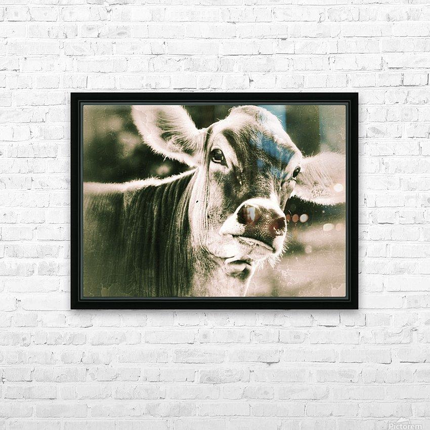 Gitane HD Sublimation Metal print with Decorating Float Frame (BOX)