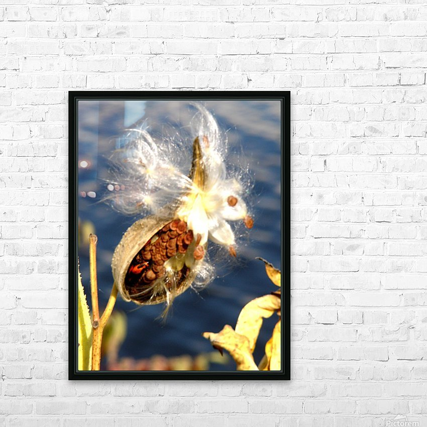 Wild Thing HD Sublimation Metal print with Decorating Float Frame (BOX)