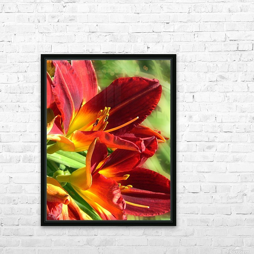 Firecrackers HD Sublimation Metal print with Decorating Float Frame (BOX)