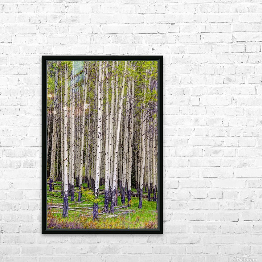 Aspens In Banff National Park HD Sublimation Metal print with Decorating Float Frame (BOX)