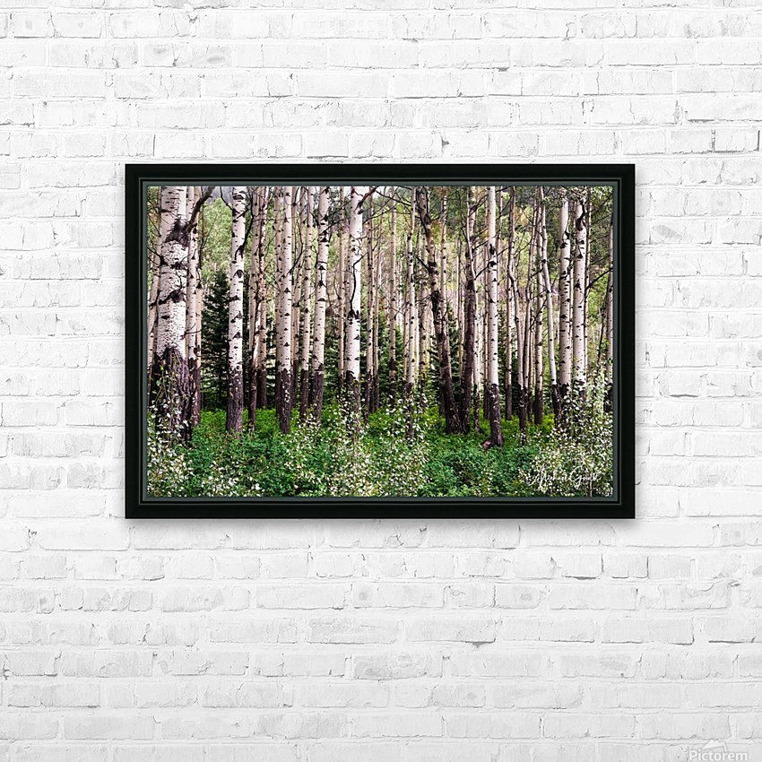 Aspens In Banff National Park at Muleshoe HD Sublimation Metal print with Decorating Float Frame (BOX)
