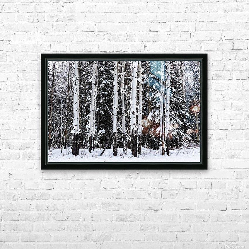 Aspens Snow Blanket Banff National Park HD Sublimation Metal print with Decorating Float Frame (BOX)