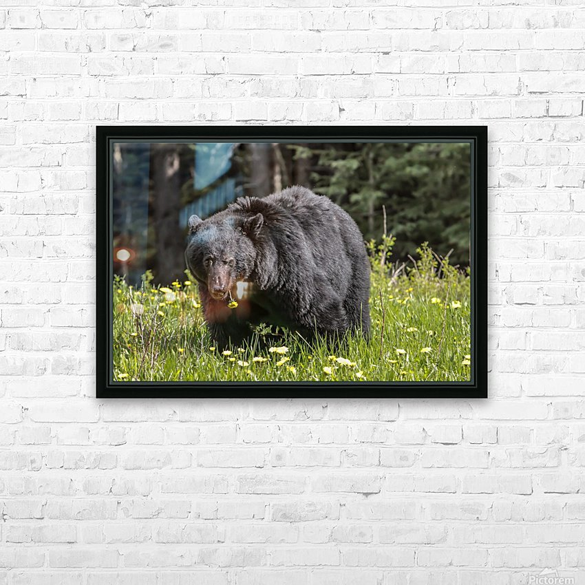 Black Bear With Dandelion HD Sublimation Metal print with Decorating Float Frame (BOX)