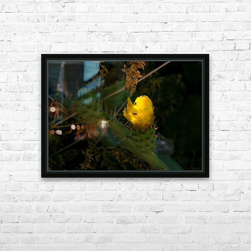 Cactus flower HD Sublimation Metal print with Decorating Float Frame (BOX)