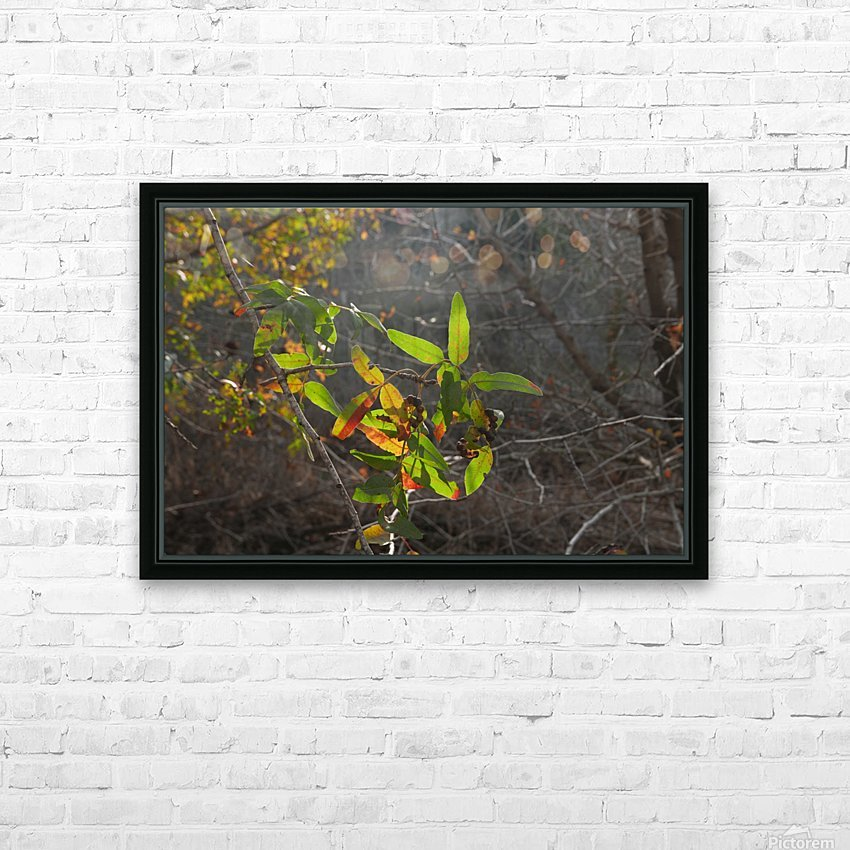 Autumn light HD Sublimation Metal print with Decorating Float Frame (BOX)