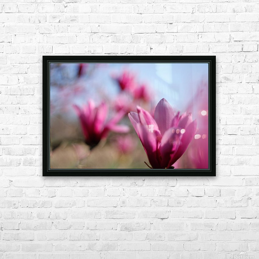 Line of Magnolias HD Sublimation Metal print with Decorating Float Frame (BOX)