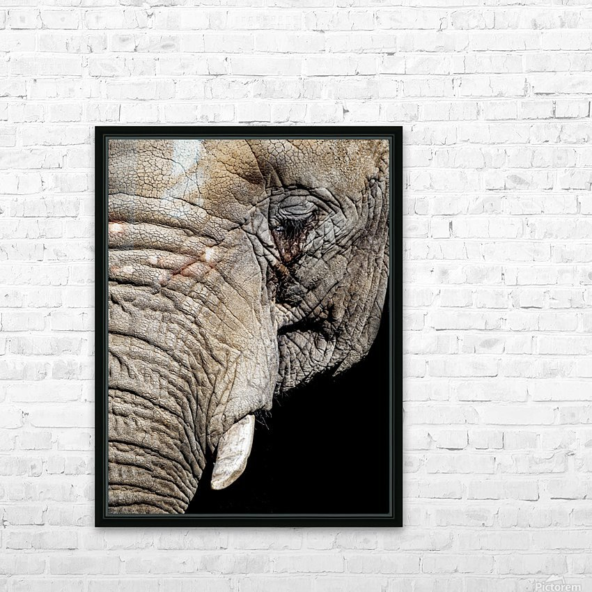 Elephant Close Up HD Sublimation Metal print with Decorating Float Frame (BOX)