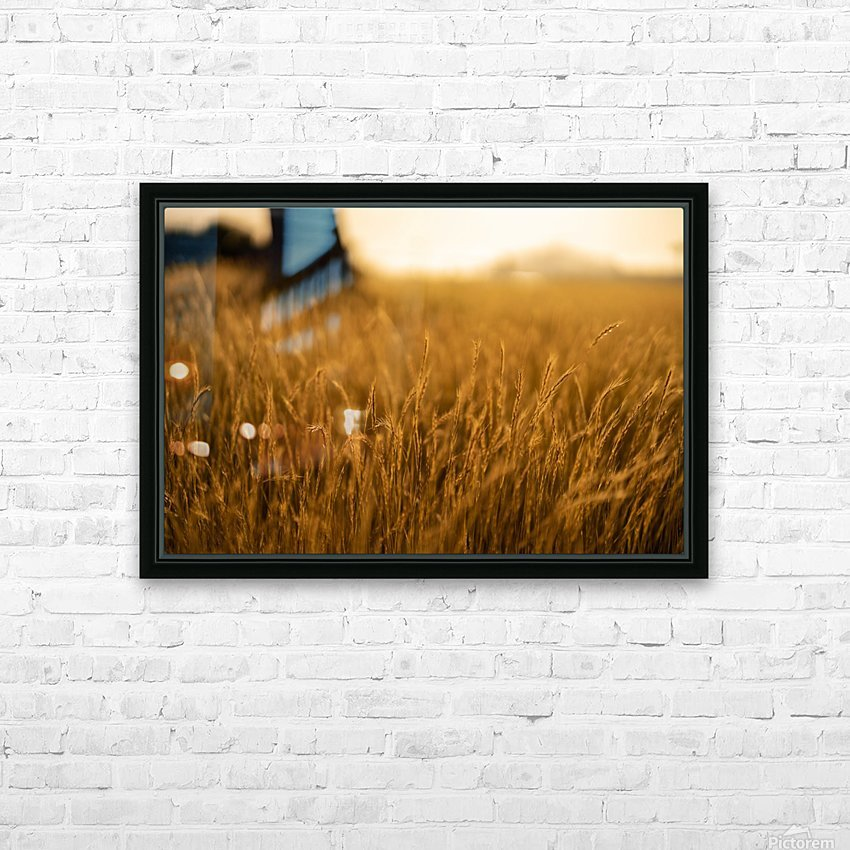 Golden Hour Field HD Sublimation Metal print with Decorating Float Frame (BOX)