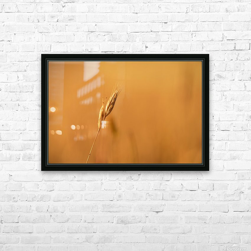 Golden Hour Grass HD Sublimation Metal print with Decorating Float Frame (BOX)