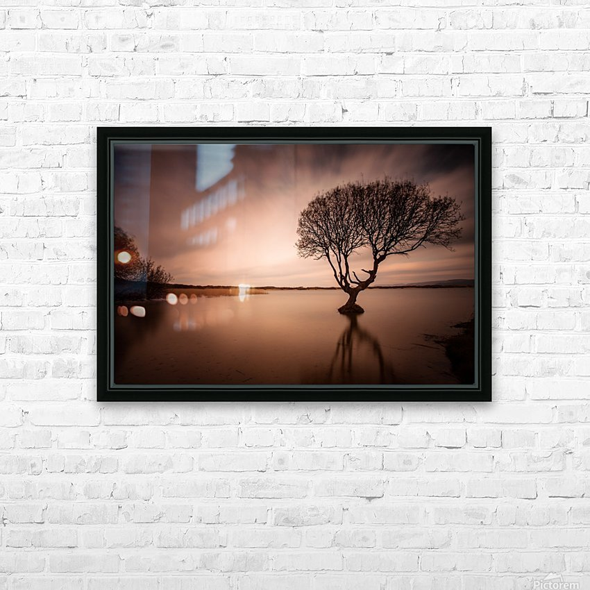The Kenfig Tree HD Sublimation Metal print with Decorating Float Frame (BOX)