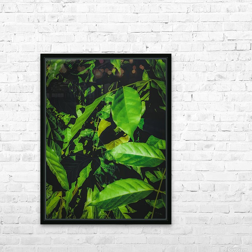 green leaves texture background HD Sublimation Metal print with Decorating Float Frame (BOX)
