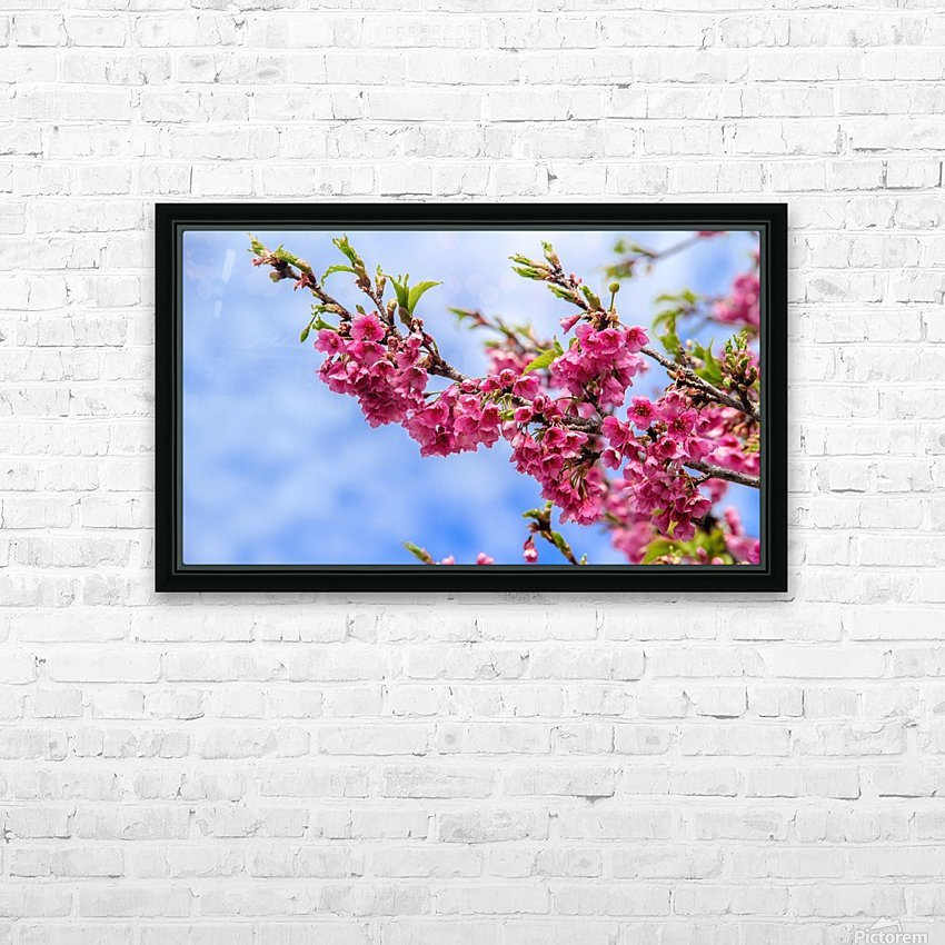Tree XIII - Cherry tree HD Sublimation Metal print with Decorating Float Frame (BOX)