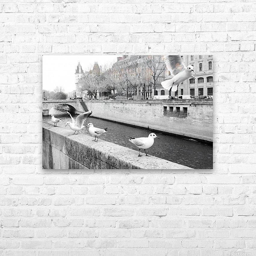 Les Oiseaux HD Sublimation Metal print with Decorating Float Frame (BOX)