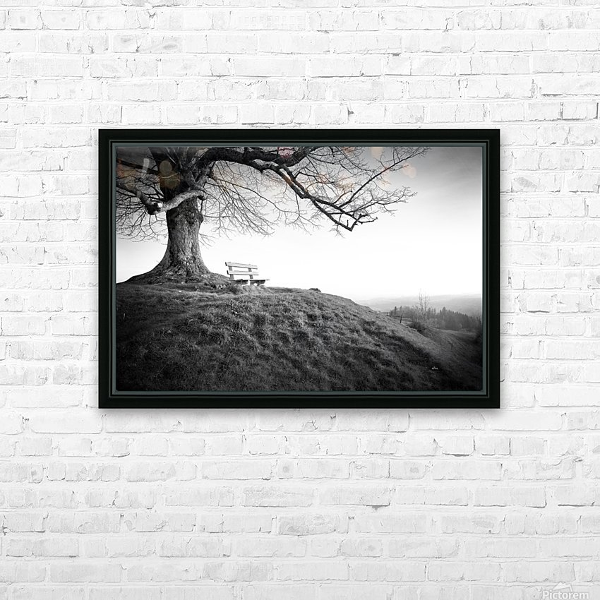 lonely bench under a tree HD Sublimation Metal print with Decorating Float Frame (BOX)