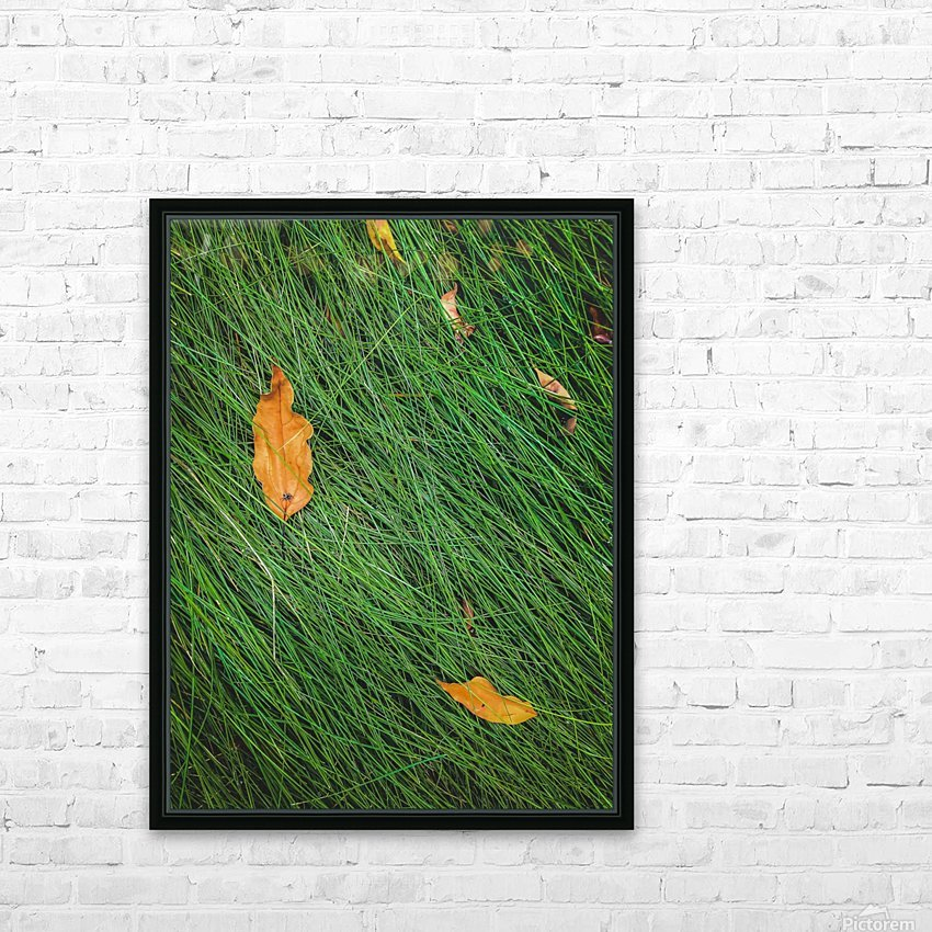 green grass field background with dry brown leaves HD Sublimation Metal print with Decorating Float Frame (BOX)