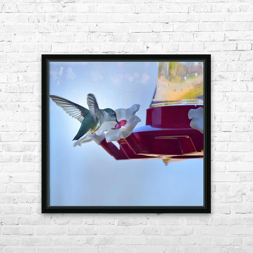 Oiseau-mouche HD sublimation métal imprimé avec décoration flotteur cadre (boîte)
