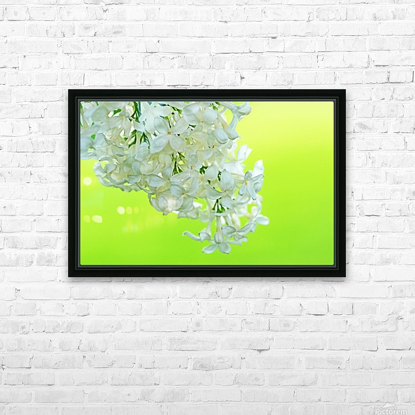 Cool White Lilac On Lemon Lime HD Sublimation Metal print with Decorating Float Frame (BOX)