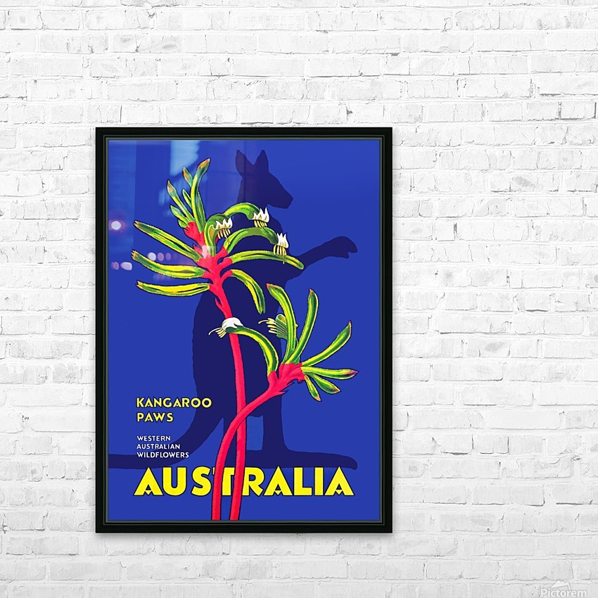 Kangaroo Paws Australia HD Sublimation Metal print with Decorating Float Frame (BOX)