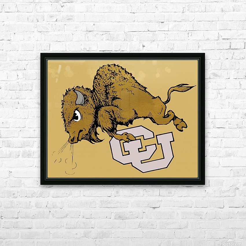 vintage cu colorado buffaloes art HD Sublimation Metal print with Decorating Float Frame (BOX)