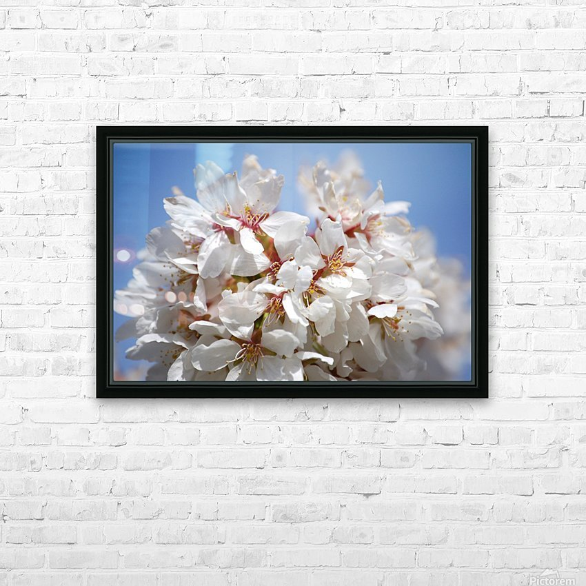 Flower Mix 09 HD Sublimation Metal print with Decorating Float Frame (BOX)