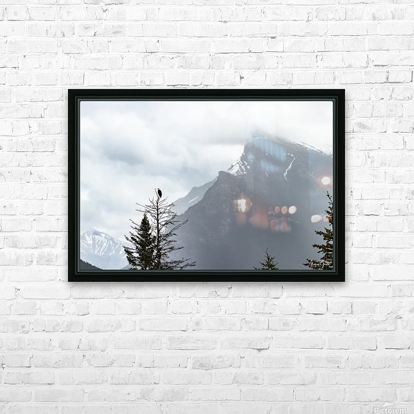 Bald Eagle In Banff National Park HD Sublimation Metal print with Decorating Float Frame (BOX)