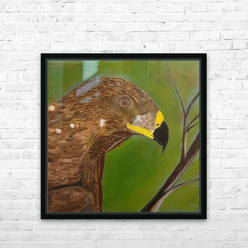 Bird of Prey HD Sublimation Metal print with Decorating Float Frame (BOX)