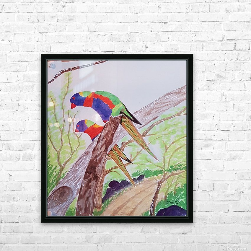 parakeets HD Sublimation Metal print with Decorating Float Frame (BOX)
