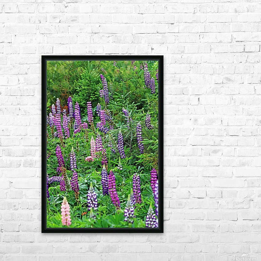 Wild Lupine Spires HD Sublimation Metal print with Decorating Float Frame (BOX)