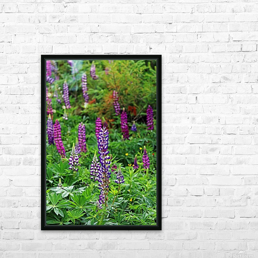 Shades Of Purple Lupine HD Sublimation Metal print with Decorating Float Frame (BOX)