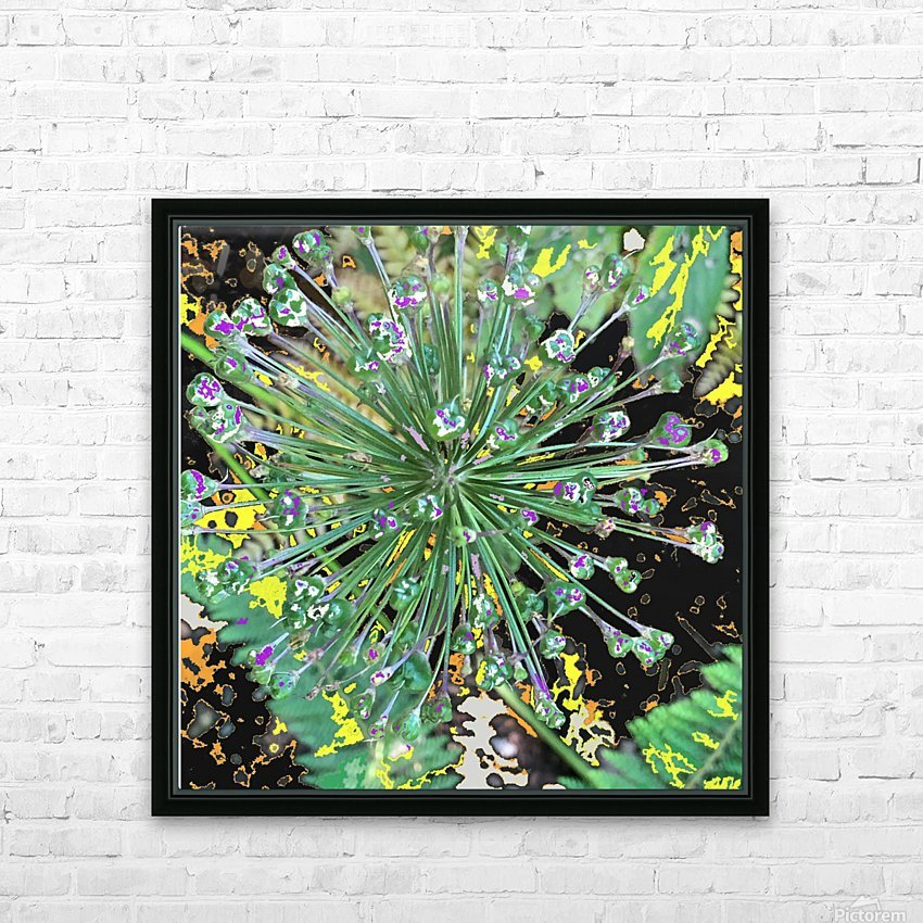Alium with Purple HD Sublimation Metal print with Decorating Float Frame (BOX)